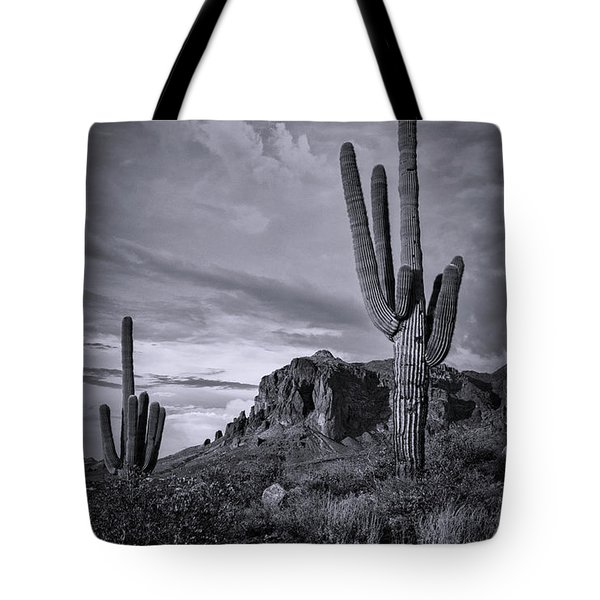Tote Bag featuring the photograph The Sentinels Of The Supes In Black And White  by Saija Lehtonen
