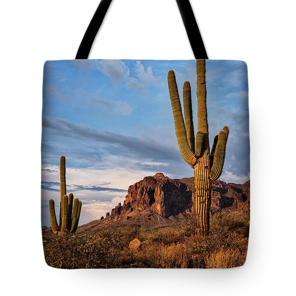 Tote Bag featuring the photograph The Sentinels Of The Supes In Color  by Saija Lehtonen