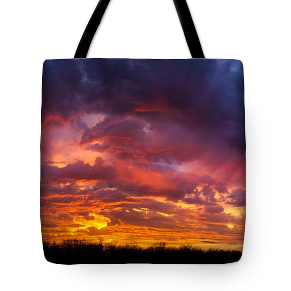 Tote Bag featuring the photograph The Sentinel's Surprise by Jeff Phillippi