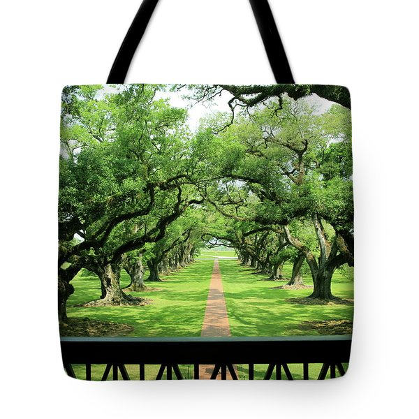The Shade Of The Oak Tree Tote Bag