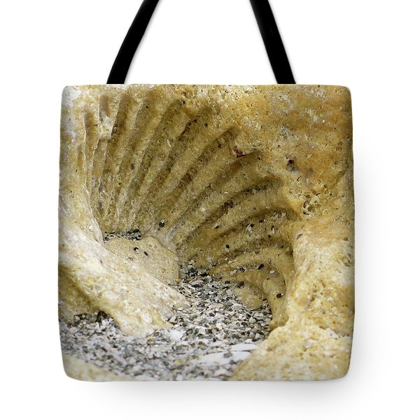 The Shell Fossil Tote Bag