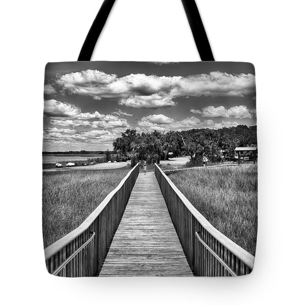 The Shell Mound Tote Bag by Howard Salmon