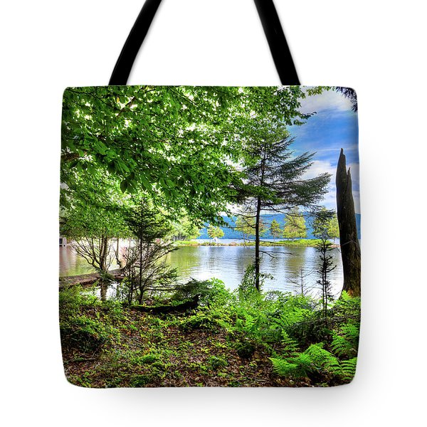 Tote Bag featuring the photograph The Shore At Covewood by David Patterson