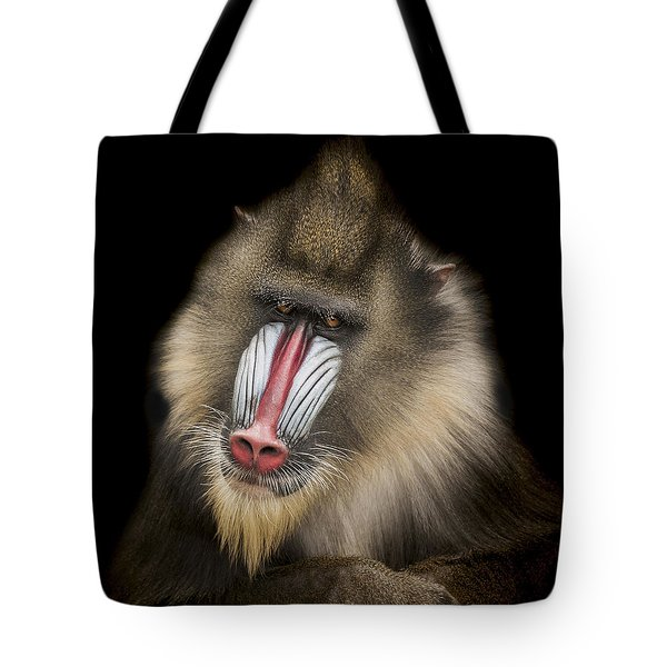 The Shrink Tote Bag