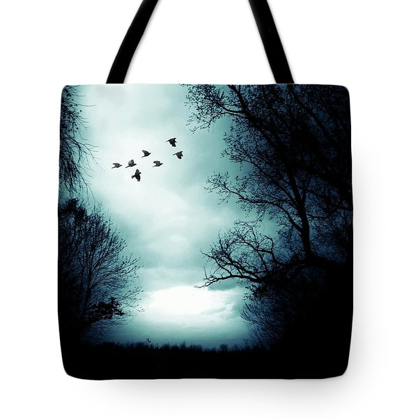 The Skies Hold Many Secrets Known Only To A Few Tote Bag
