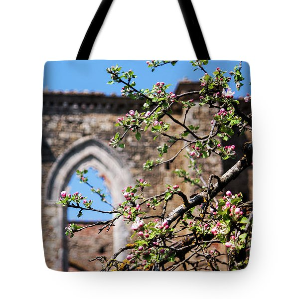 The Sky As A Roof Tote Bag