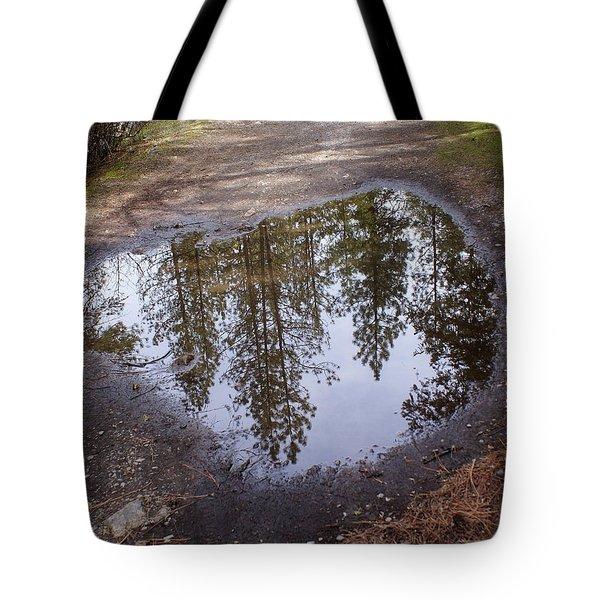 The Sky Below Tote Bag by Ben Upham III