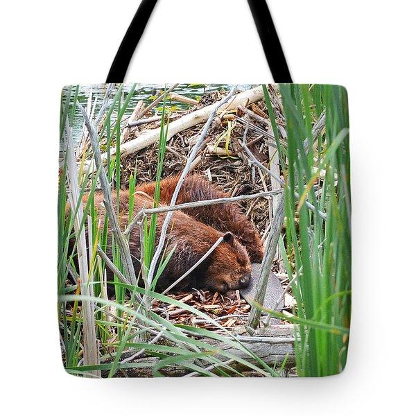The Sleeping Beavers Tote Bag