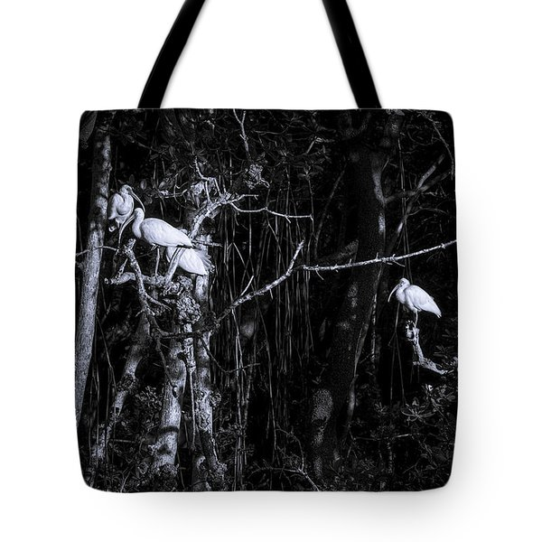 The Sleeping Quaters Tote Bag