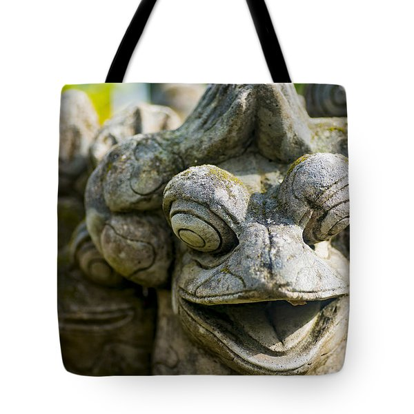 the Smiling Frog Tote Bag