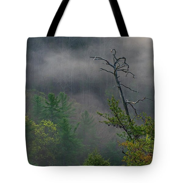 The Snag Tote Bag by Ulrich Burkhalter