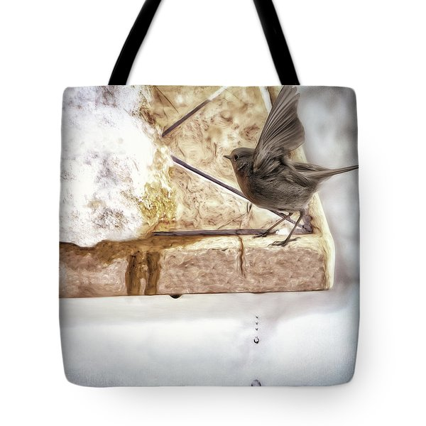 Tote Bag featuring the photograph The Snow Melts by Pennie  McCracken
