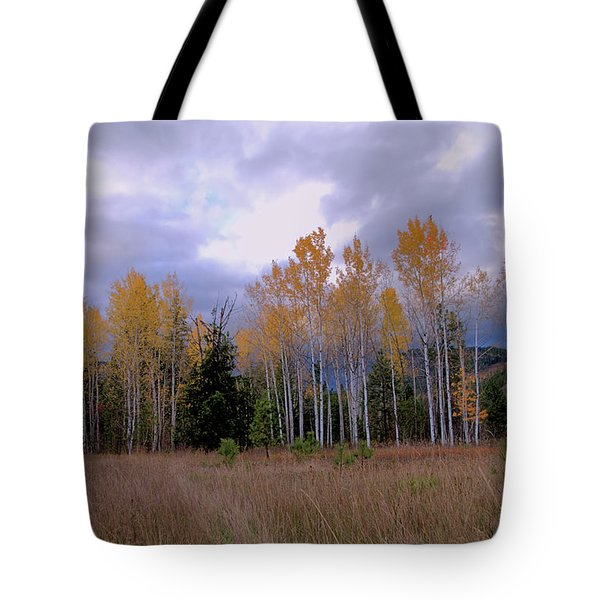 The  Song Of The Aspens 2 Tote Bag by Victor K