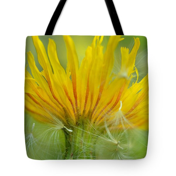 The Sow And Silk Tote Bag