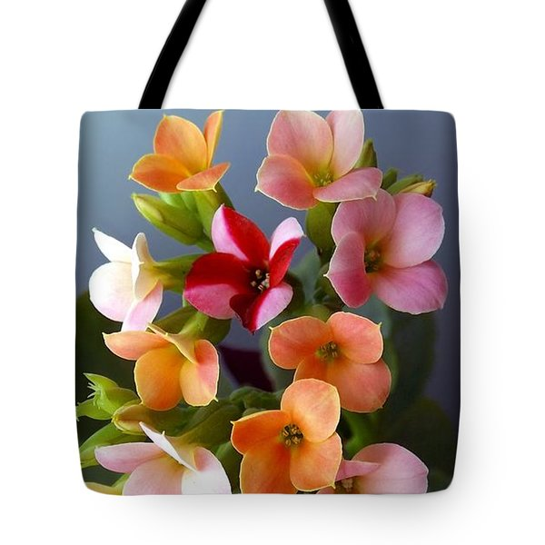 The Special One Tote Bag by Danielle R T Haney