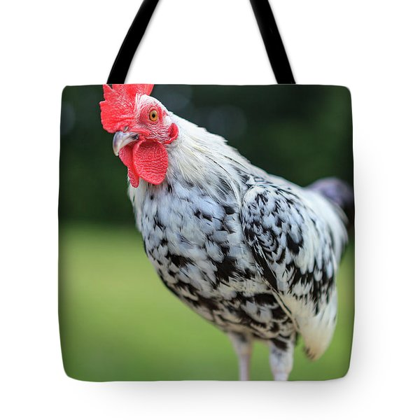 The Speckled Chicken Tote Bag