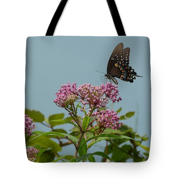 The Spicebush Swallowtail Of Prettyboy Reservoir Tote Bag by Donald C Morgan
