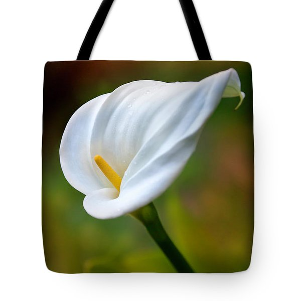 Tote Bag featuring the photograph The Spirit Of Ecstasy by Marion Cullen