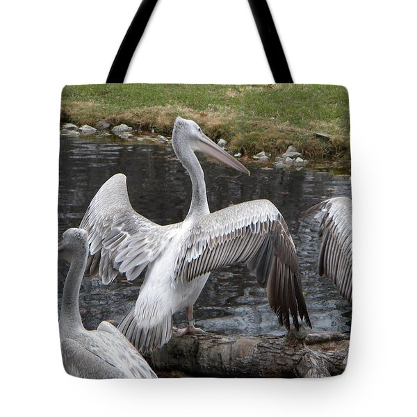 Tote Bag featuring the photograph The Spread by Amanda Eberly-Kudamik