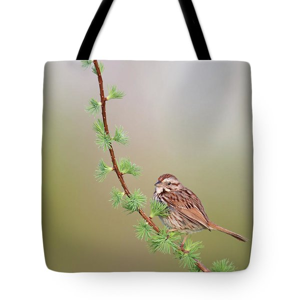 The Spring. Tote Bag