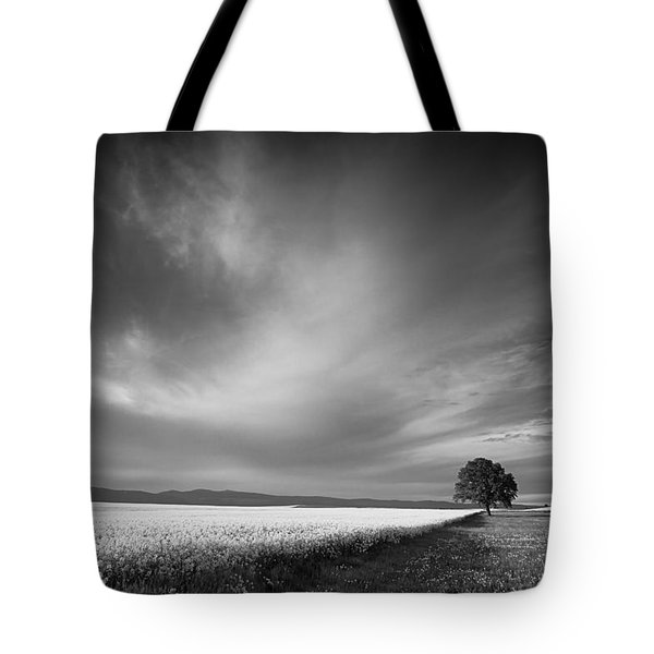 The Spring Leader Tote Bag by Dominique Dubied