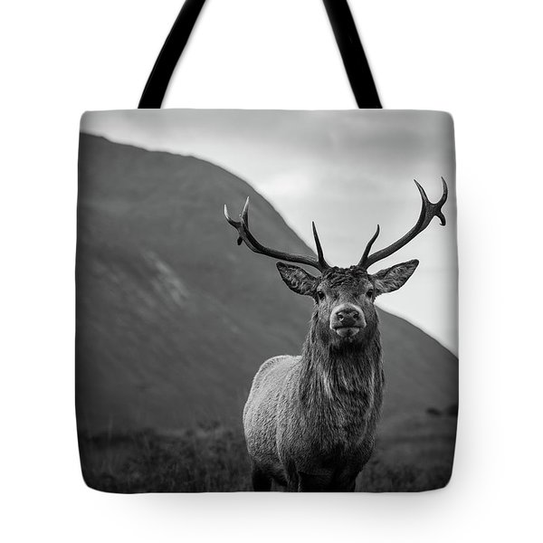 The Stag.  Tote Bag
