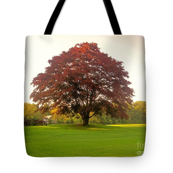The Storybook Tree Tote Bag