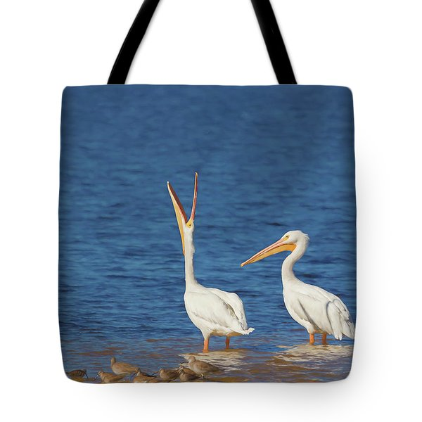 Tote Bag featuring the photograph The Stretch by Kim Hojnacki