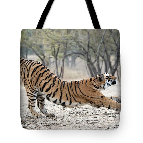 The Stretch Tote Bag
