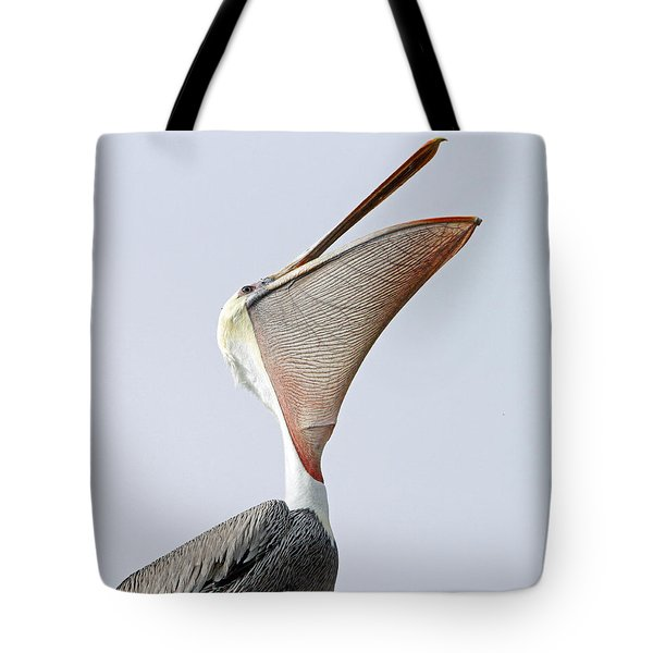 The Stretch  Tote Bag by Shoal Hollingsworth