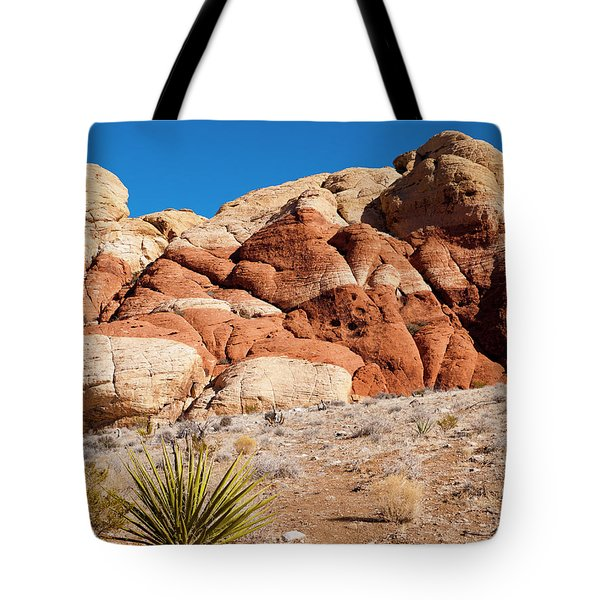The Striped Rock Tote Bag by Rae Tucker