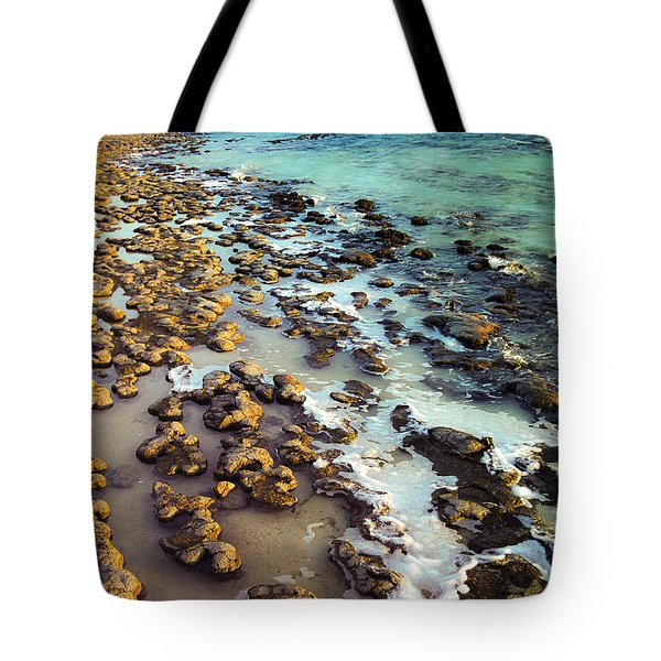 The Stromatolite Family Enjoying Its 1277500000000th Sunset Tote Bag
