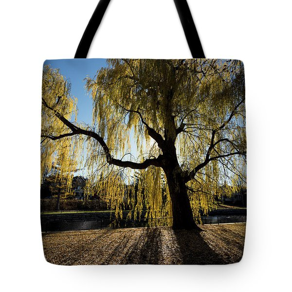 The Sun Goes Through Tote Bag by Celso Bressan