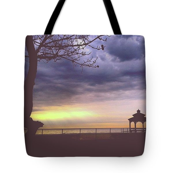 The Sun Is Peeking Through Tote Bag by Lauren Fitzpatrick