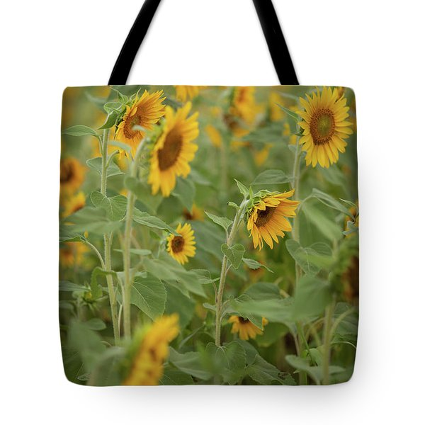 The Sunflower Patch Tote Bag