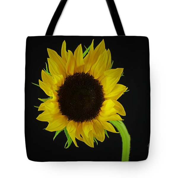 The Sunflower Tote Bag by Ray Shrewsberry