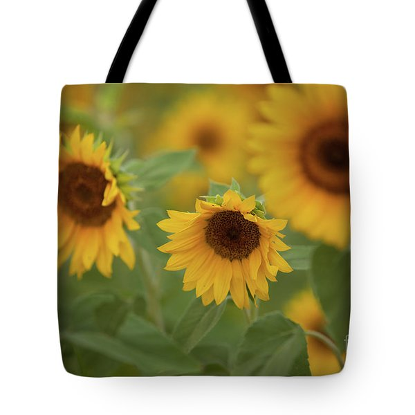 The Sunflowers In The Field Tote Bag