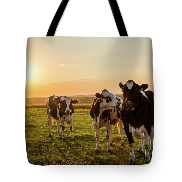 The Sunset Graze Tote Bag