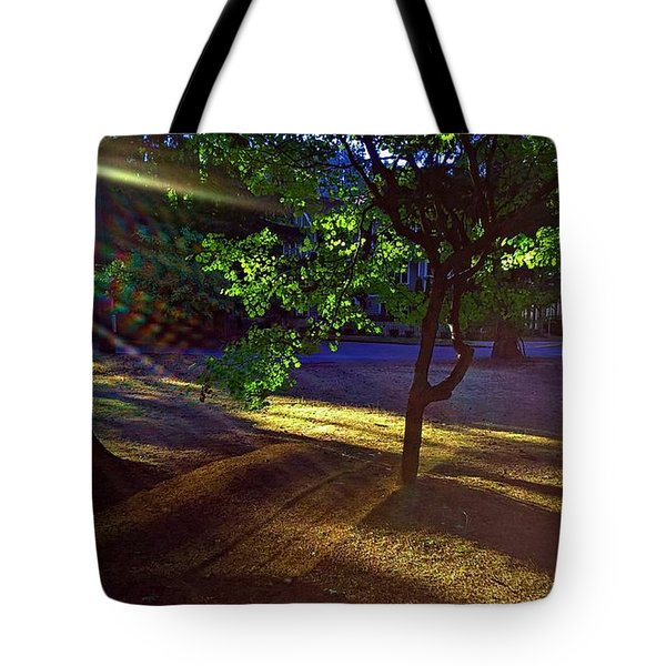The Sunset Grove  Tote Bag by Karl Reid