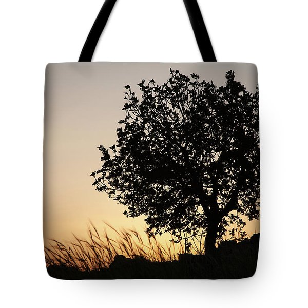 Sunset On The Hill Tote Bag by Yoel Koskas