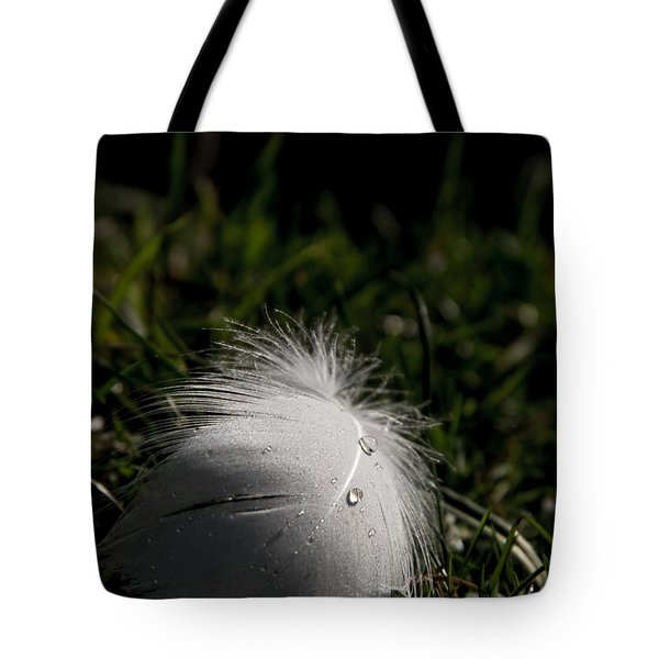The Swans Are Back Tote Bag