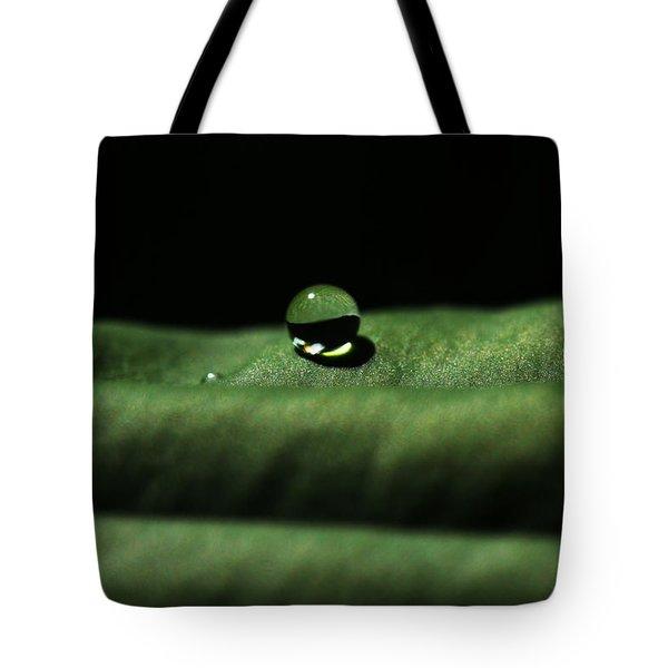 The Tao Of Raindrop Tote Bag
