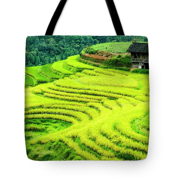 Tote Bag featuring the photograph The Terraced Fields Scenery In Autumn by Carl Ning