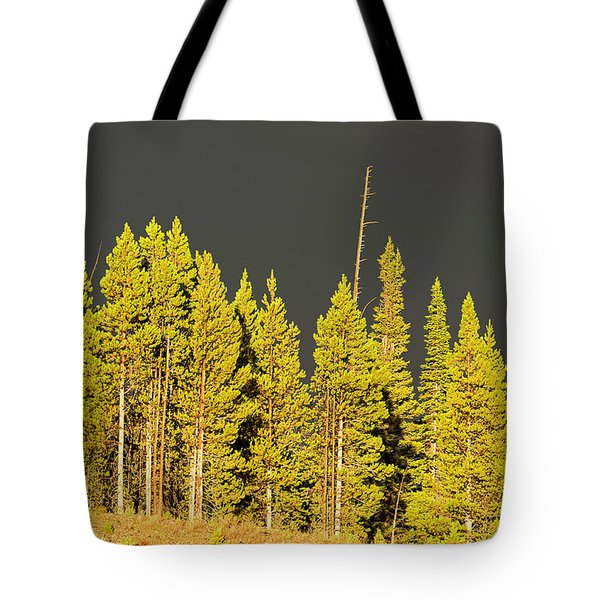 The Thunderstorm Has Passed Tote Bag