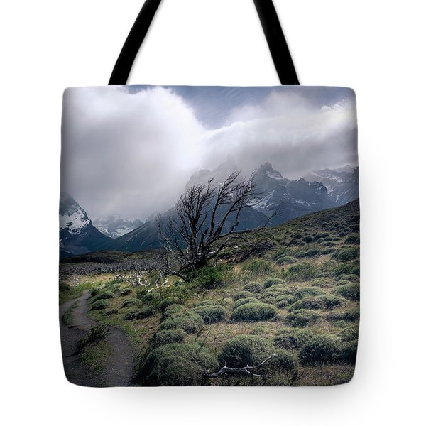 Tote Bag featuring the photograph The Tree In The Wind by Andrew Matwijec