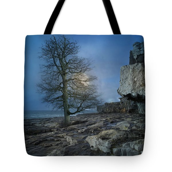 The Tree Of Inis Mor Tote Bag