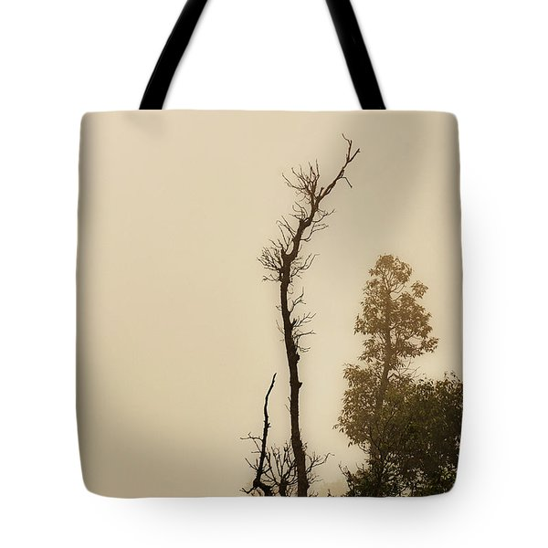 The Trees Against The Mist Tote Bag by Rajiv Chopra