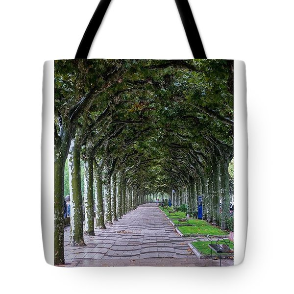 The Trees. Burgos, Spain.  #europe Tote Bag by Marcelo Valente