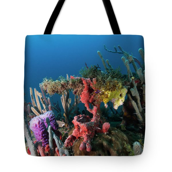 Tote Bag featuring the photograph The Underwater World Of Cayos Cochinos 2 by Rico Besserdich