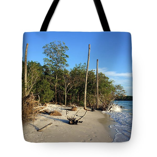 The Unspoiled Beauty Of Barefoot Beach In Naples - Landscape Tote Bag